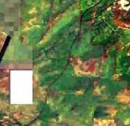 Atapuerca comarca temática