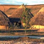 Cómo construir una cabaña prehistórica