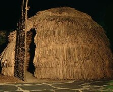 Prehistoria nocturna