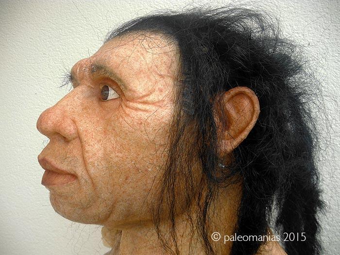 Máscara neandertal para Aula Pinilla del VAlle. PAleomanias 2015