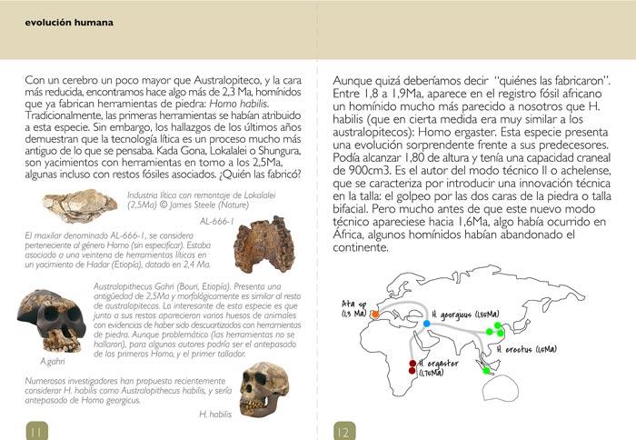 fichas maleta didactica prehistoria-paleorama