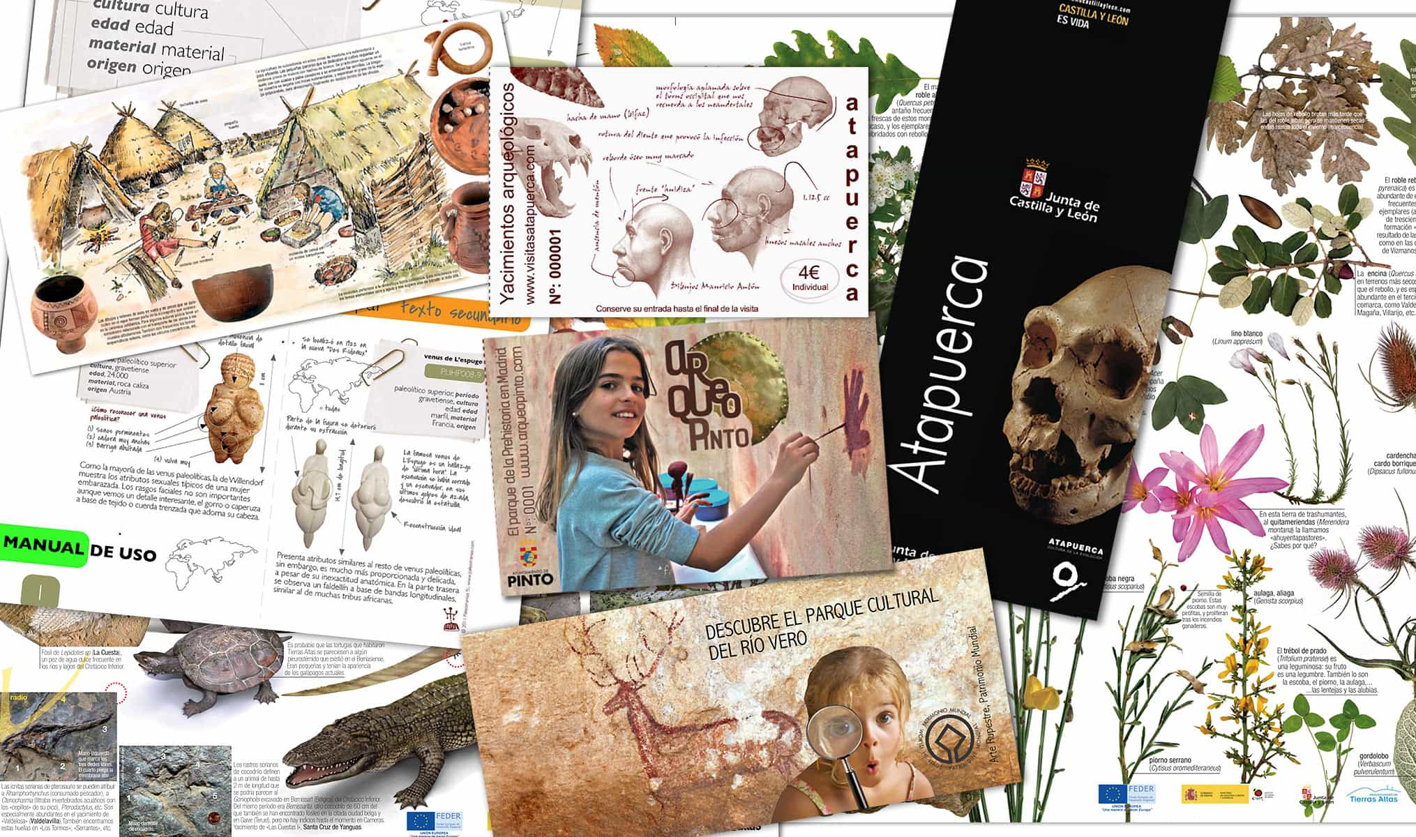 difusion-comunicacion-visual-patrimonio-arqueologico-natural-cultural-mad-paleorama